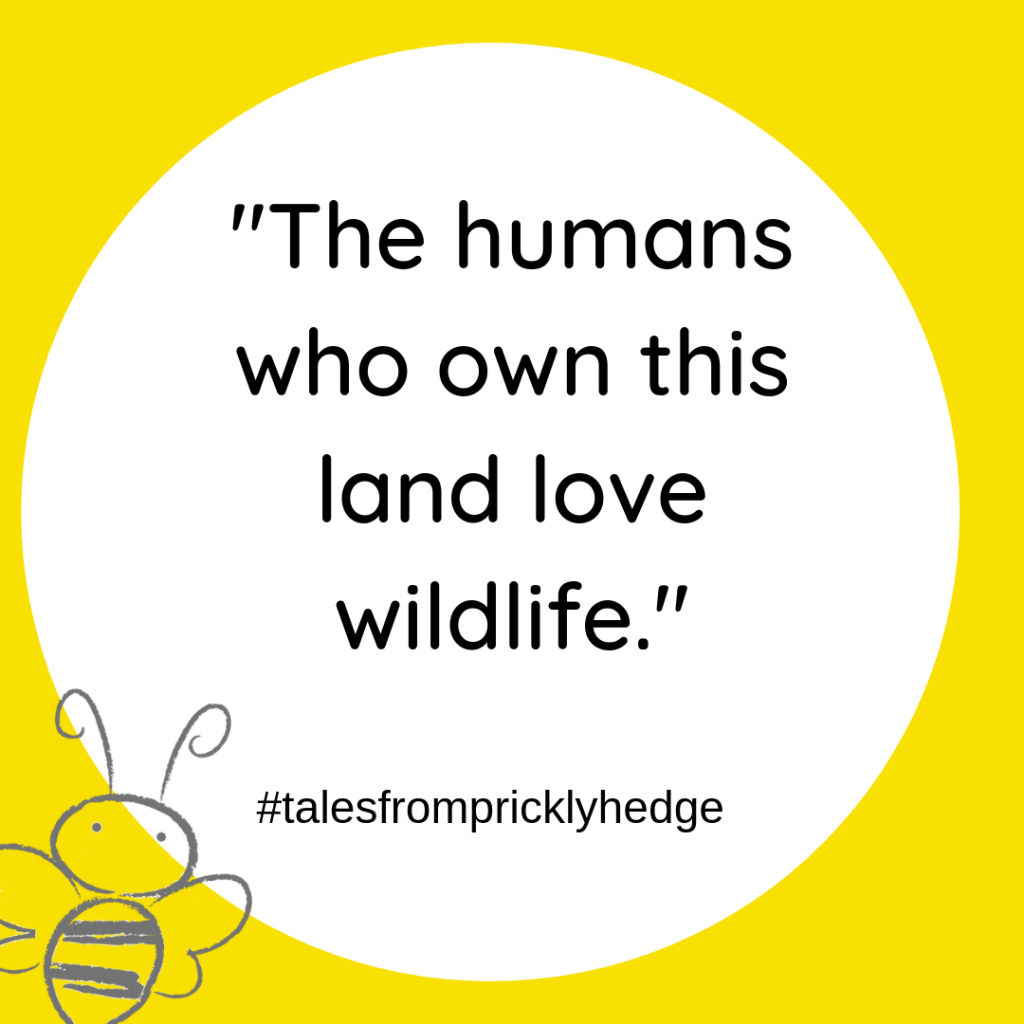 "? ? ? BOOK QUOTES ""The humans who own this land love wildlife."" Who says this? #pricklyhedge #bookquotes #savewildlife"