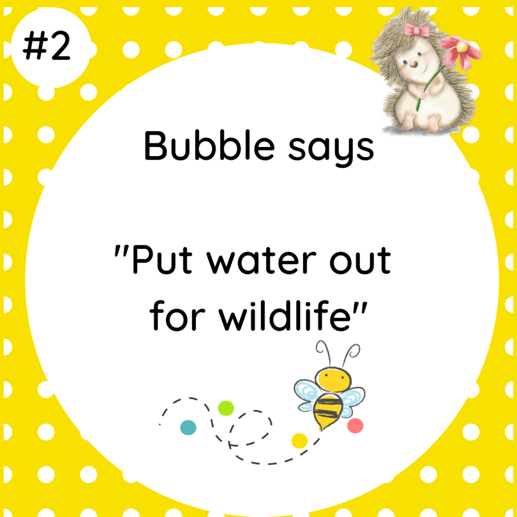 Bubble says Put water out for wildlife #wildlifetip2